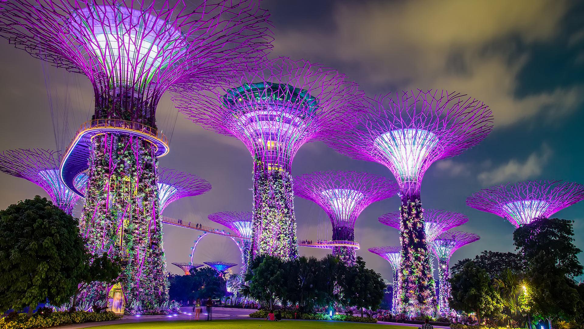 Sustainability Asia