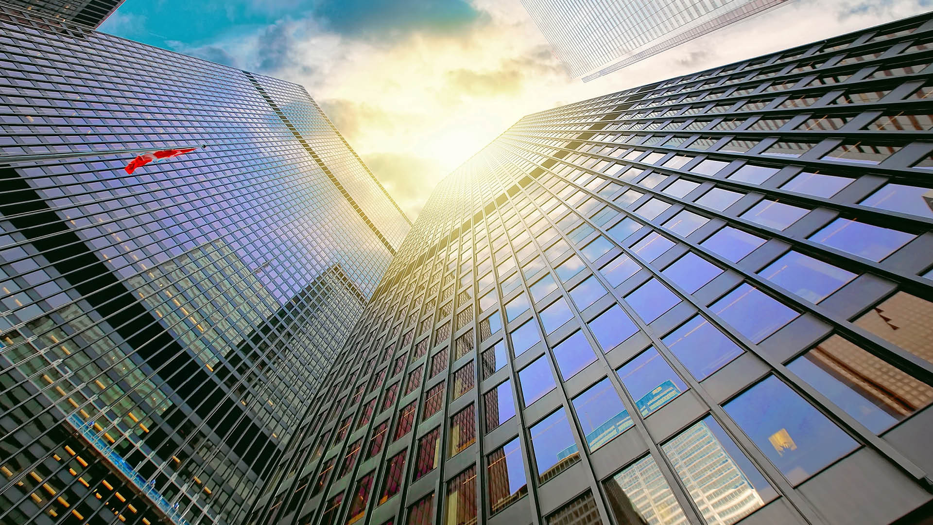 Senior management responsibility in financial services