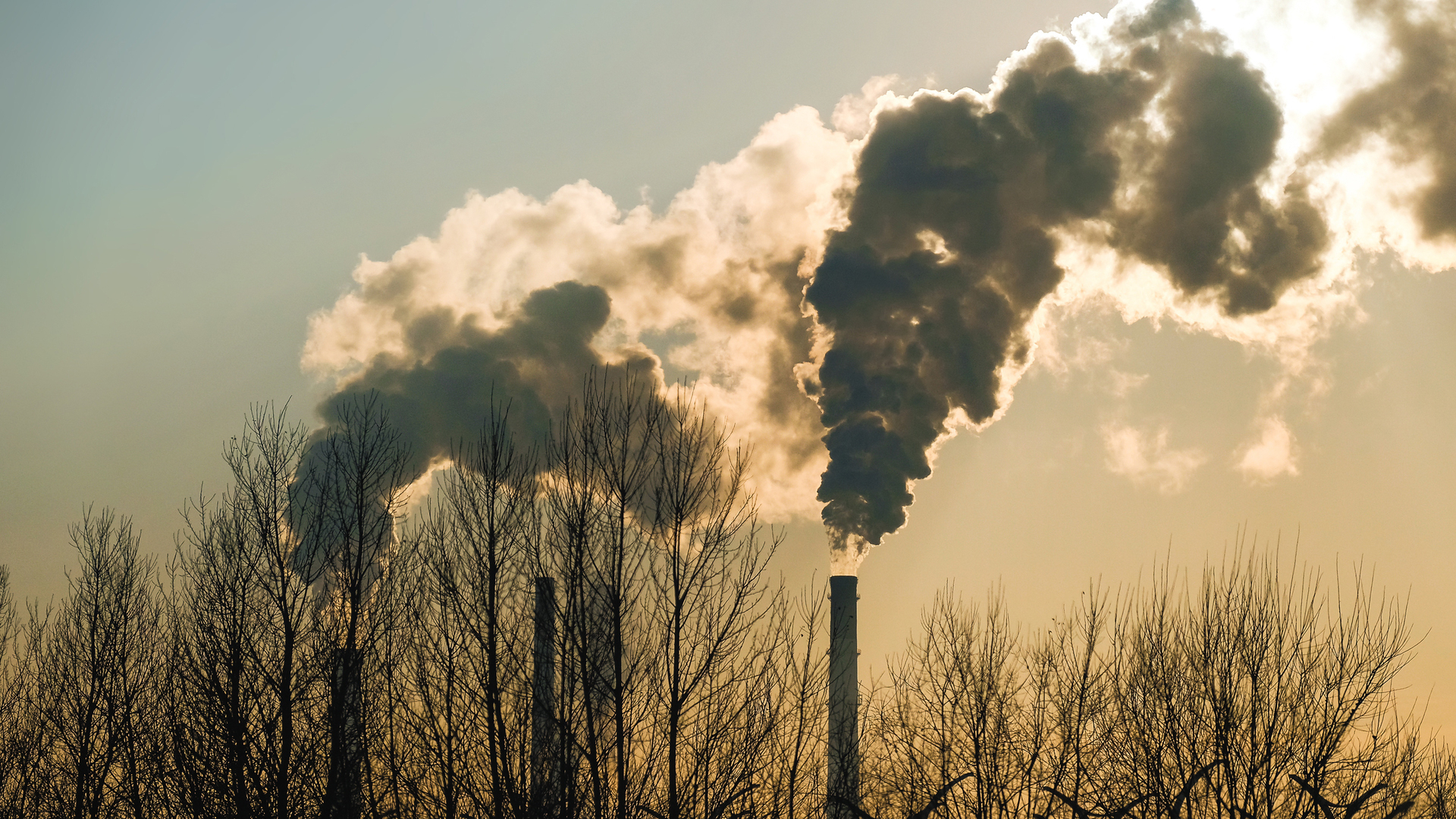 Dutch court orders Shell to reduce CO2 emissions