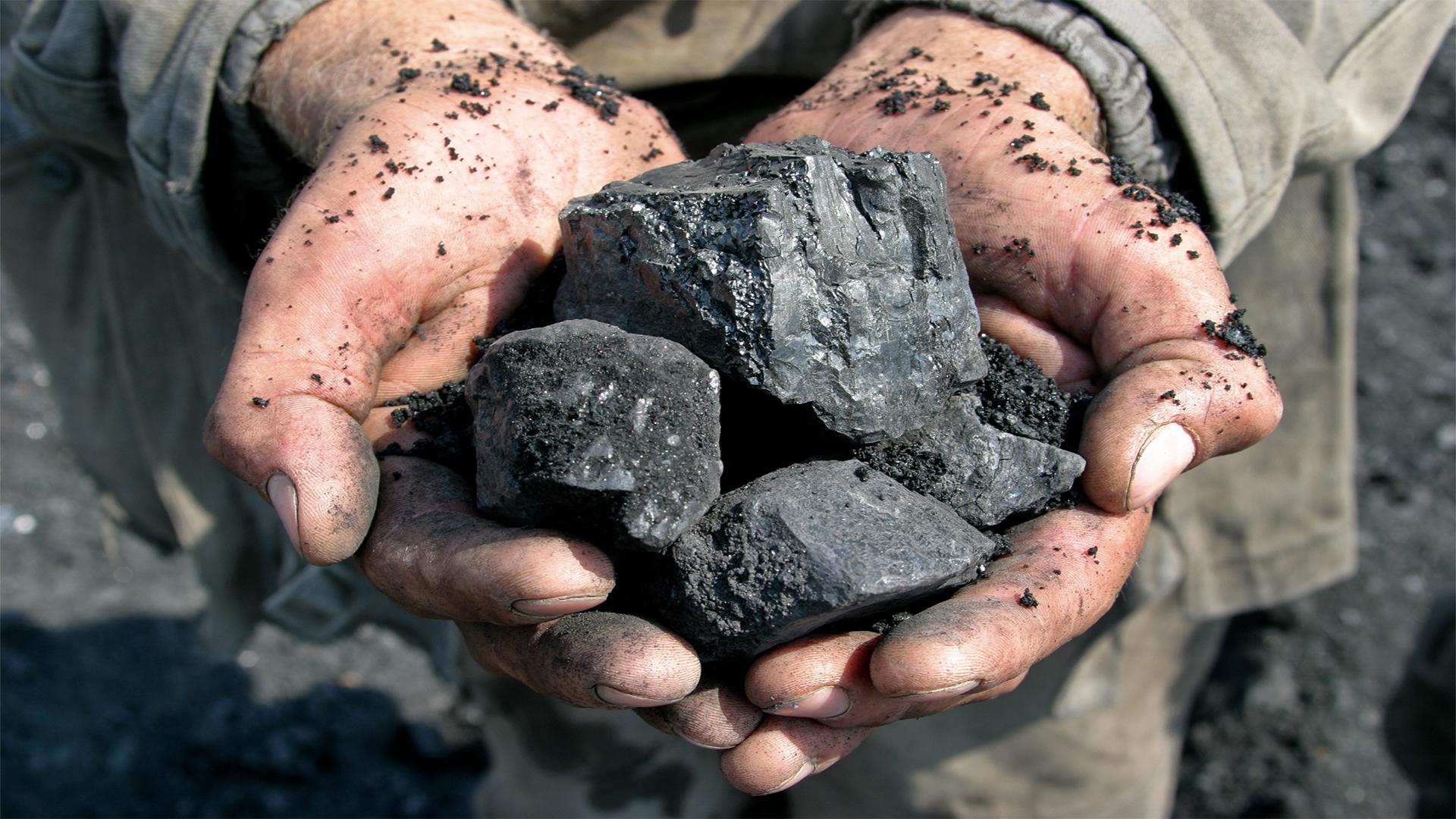 Coal in the hands of miner