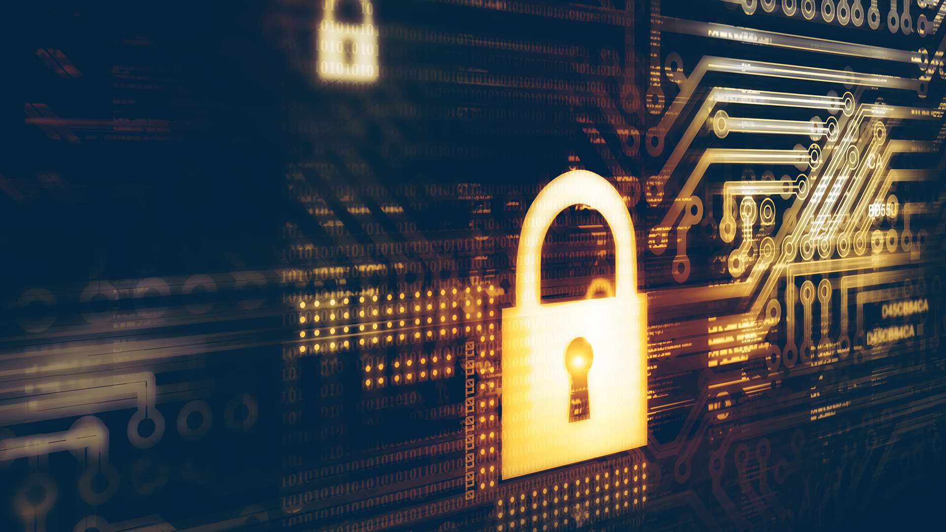 China's evolving data laws: What the PIPL means for your company