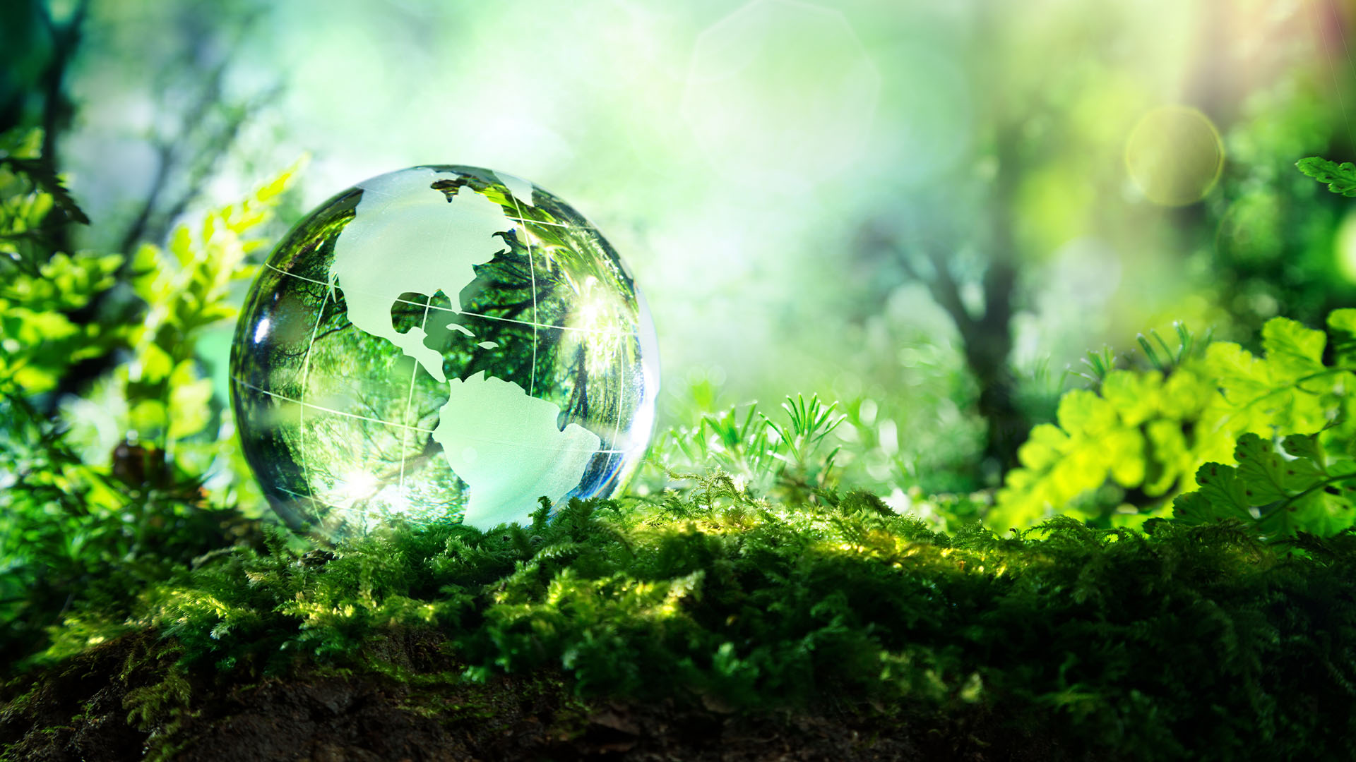 The Global Climate Crisis and the action required