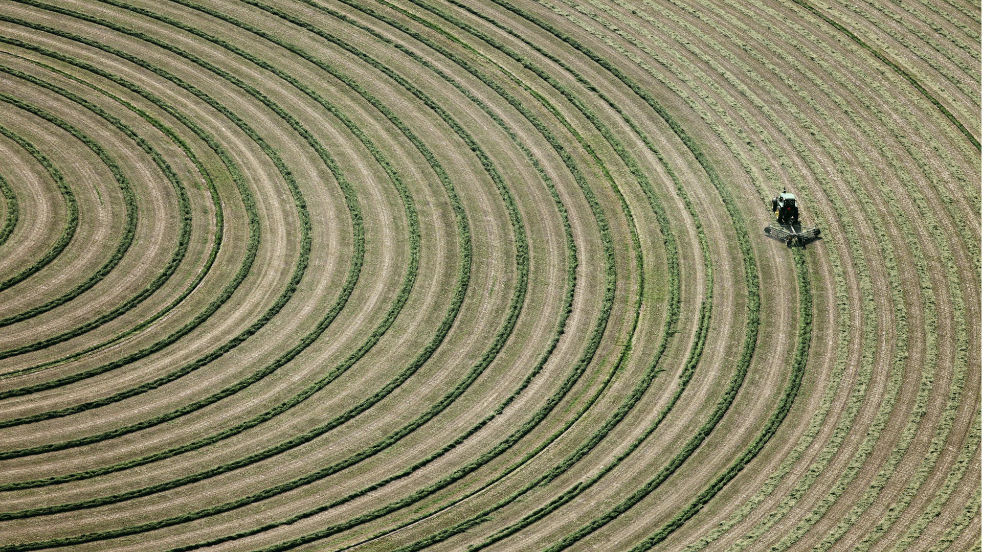 sowing field