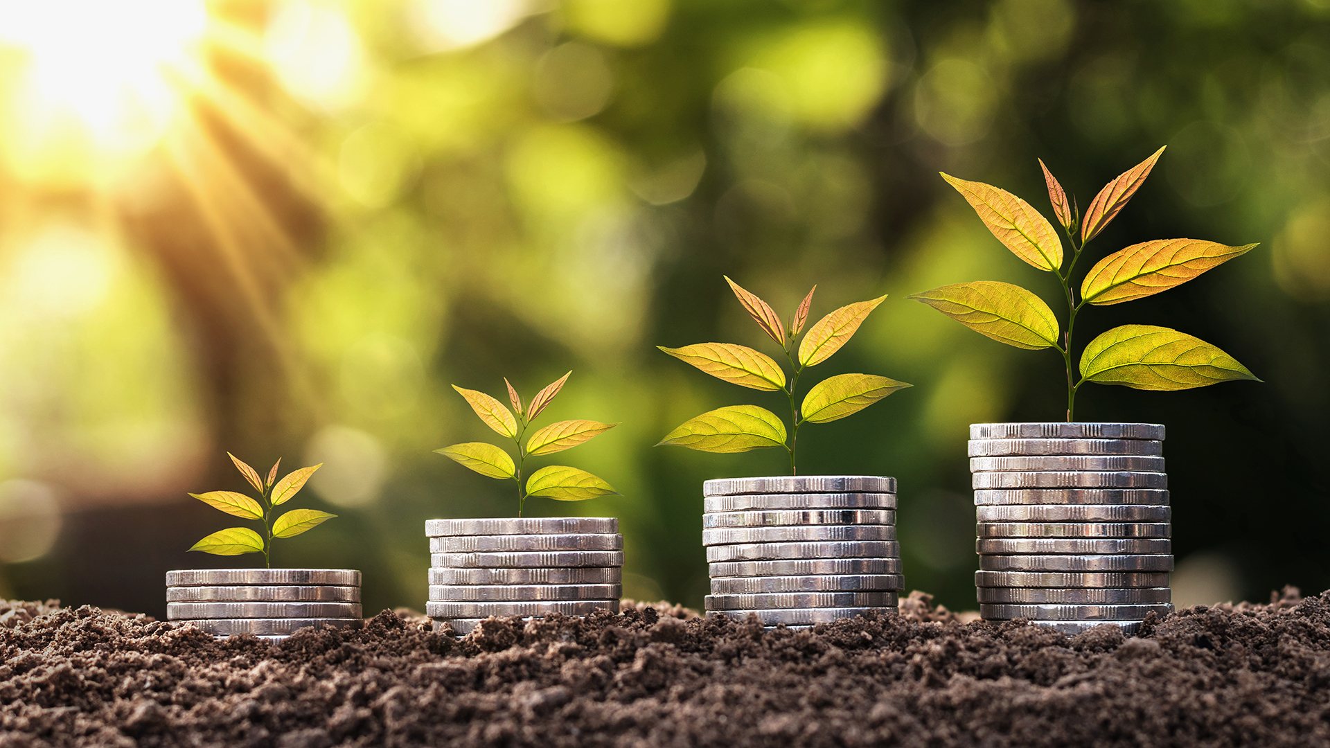 Sustainable finance: Joining the dots