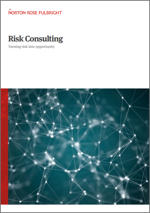 risk consulting brochure