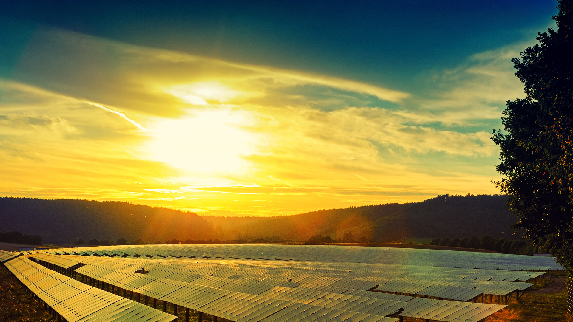 Sunrise solar panel