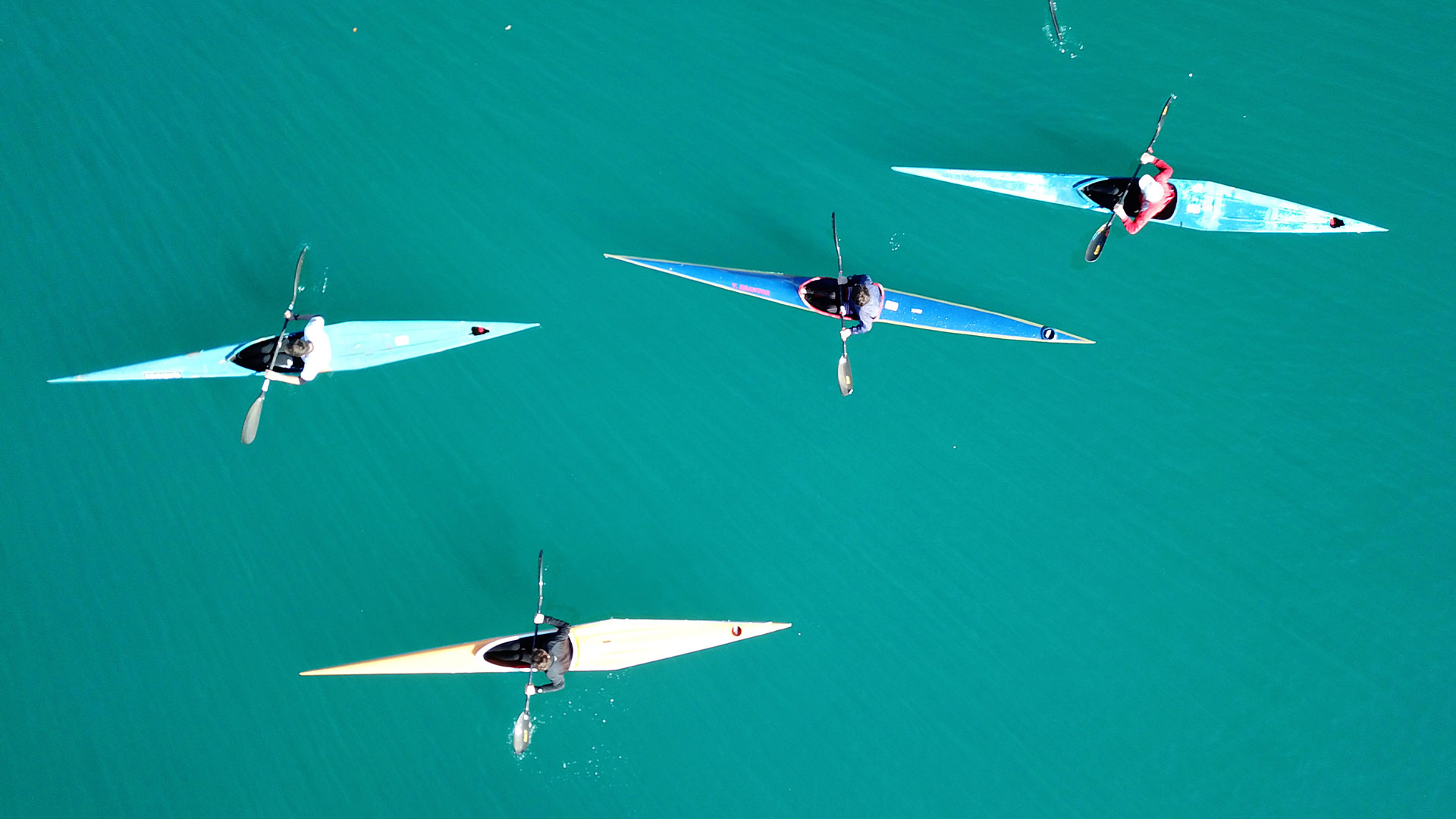 Image of four kayaks on blue water