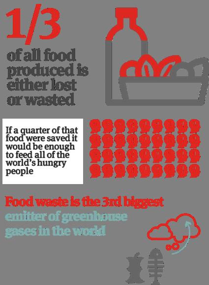 global food challenge