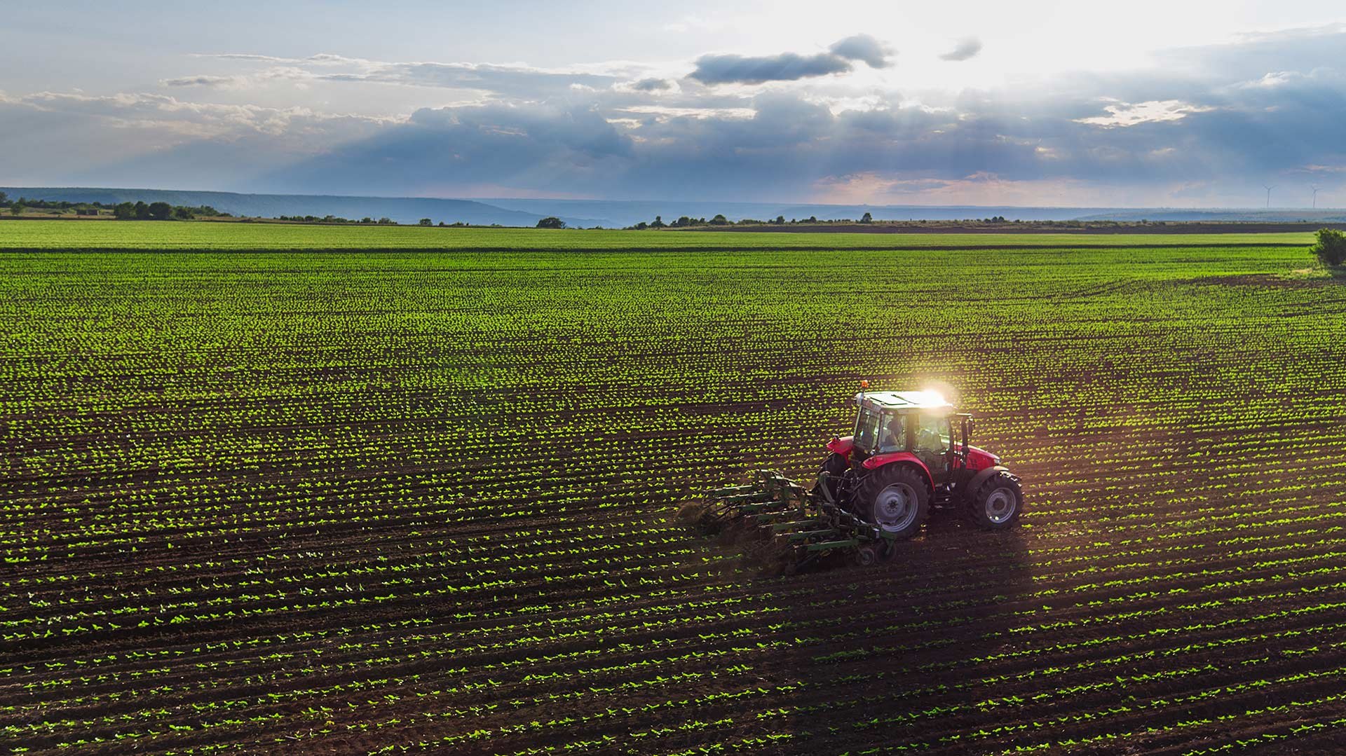 aerial shot of a red tractor ploughing a farm crop