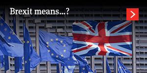 Brexit means ….?