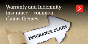 Warranty and Indemnity insurance – common claims themes