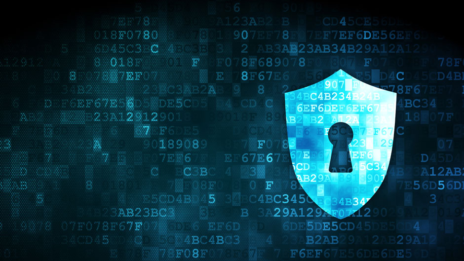 Cyber risk management and incident response solutions