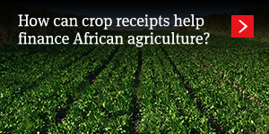 How can crop receipts help finance African agriculture?