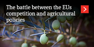 The battle between the European Union's competition and agricultural policies