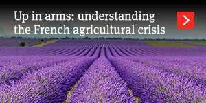 Up in arms: understanding the French agricultural crisis