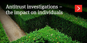 Anatomy of an effective corporate investigation