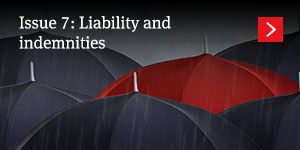 Liability and indemnities