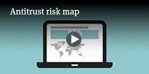 Antitrust risk map
