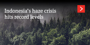 Indonesia's haze crisis hits record levels