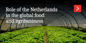 Role of the Netherlands in the global food and agribusiness