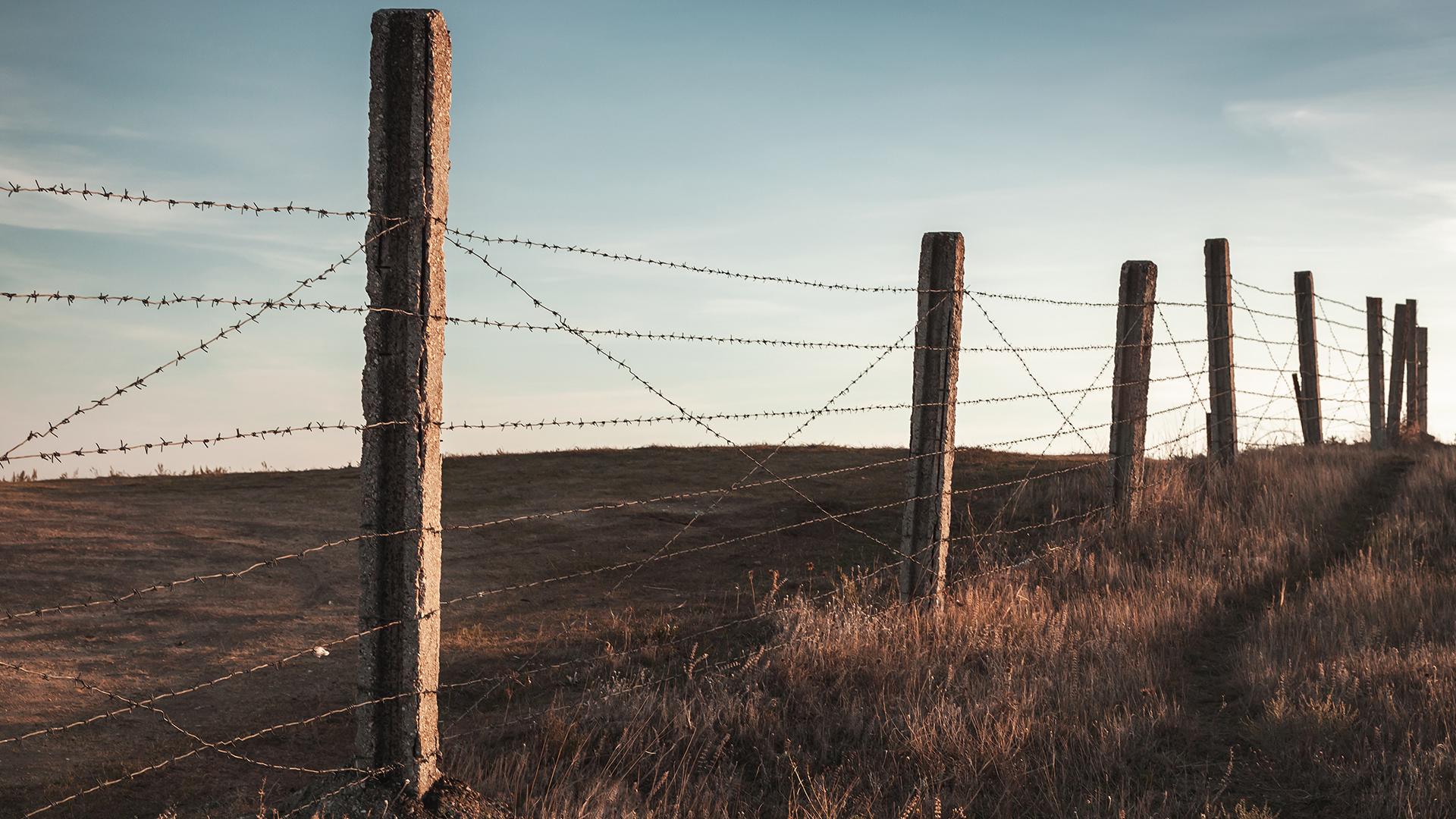 Fence Farm Agriculture