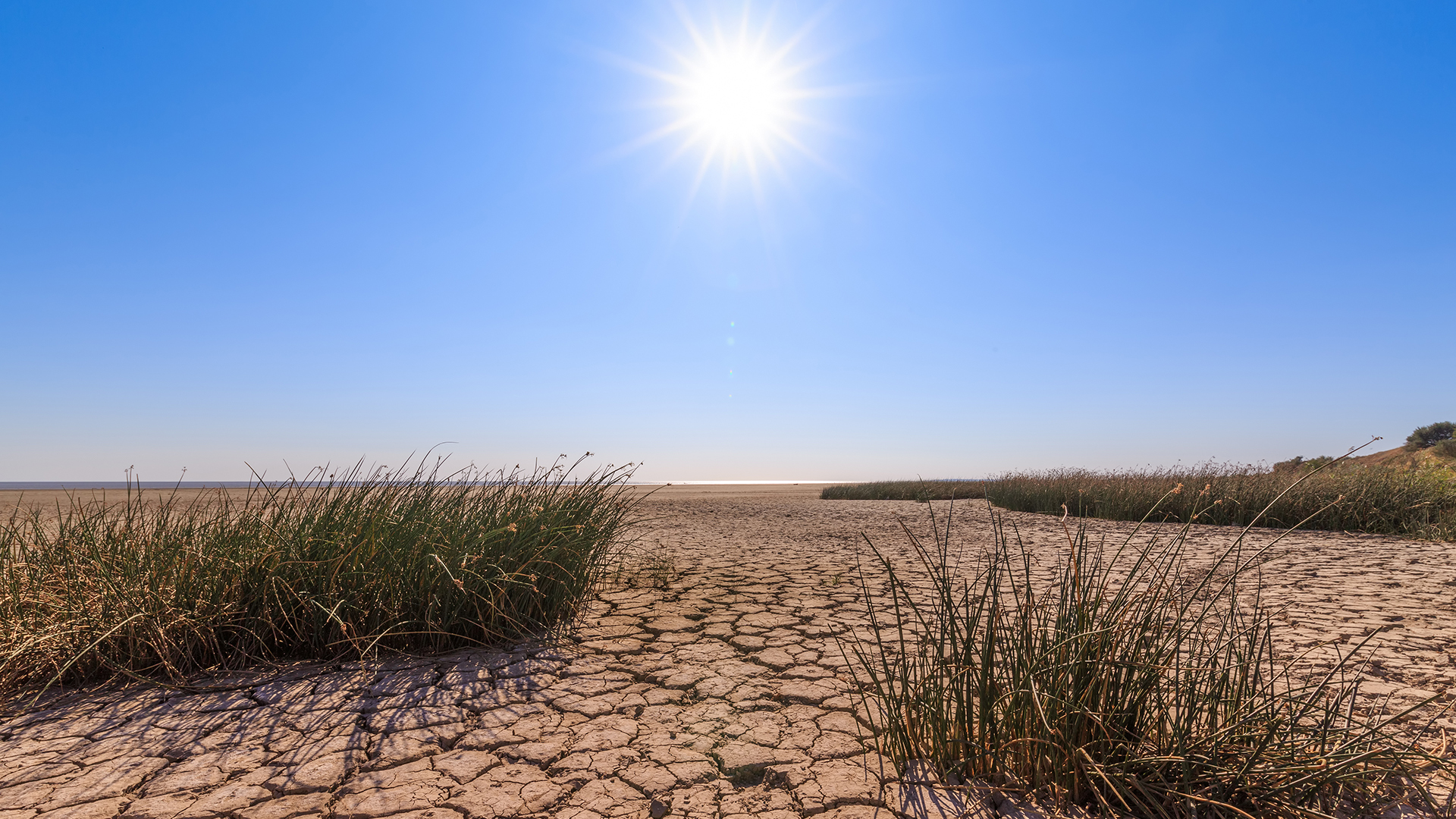 Climate change and sustainability disputes