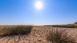 sunshine over dry desert