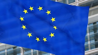 EU  Global rules on foreign direct investment