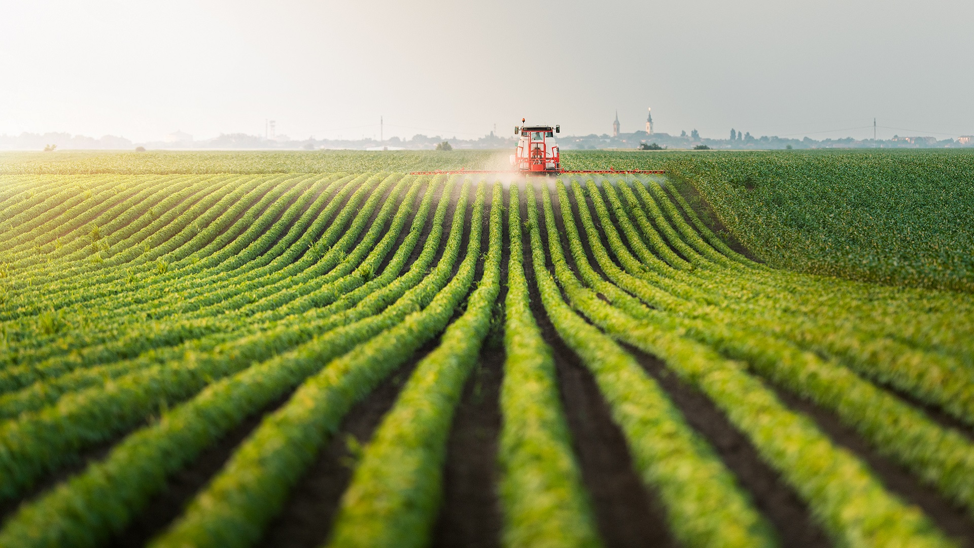 harvesting a green field