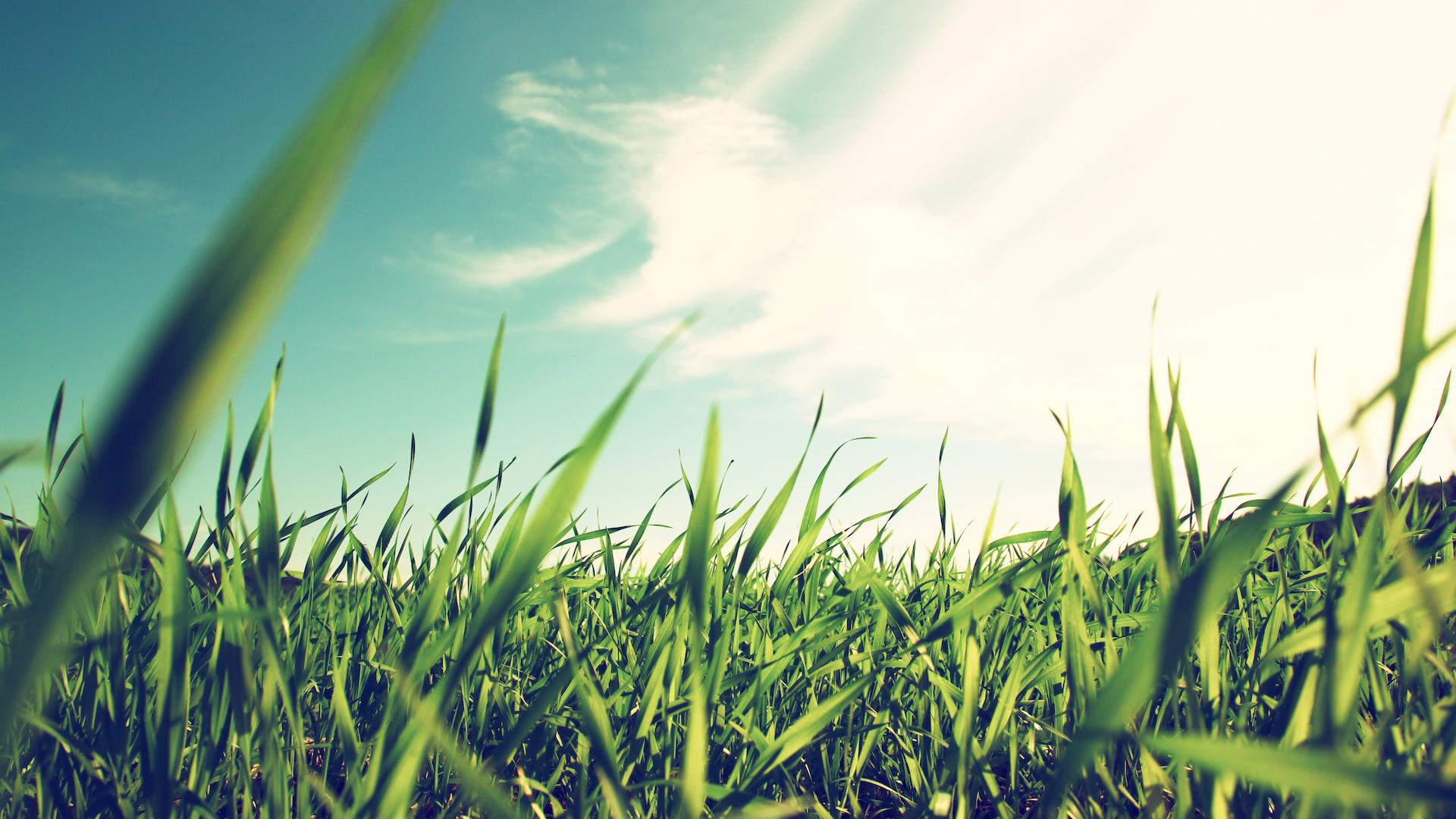 Environmental, Social and Governance Insights