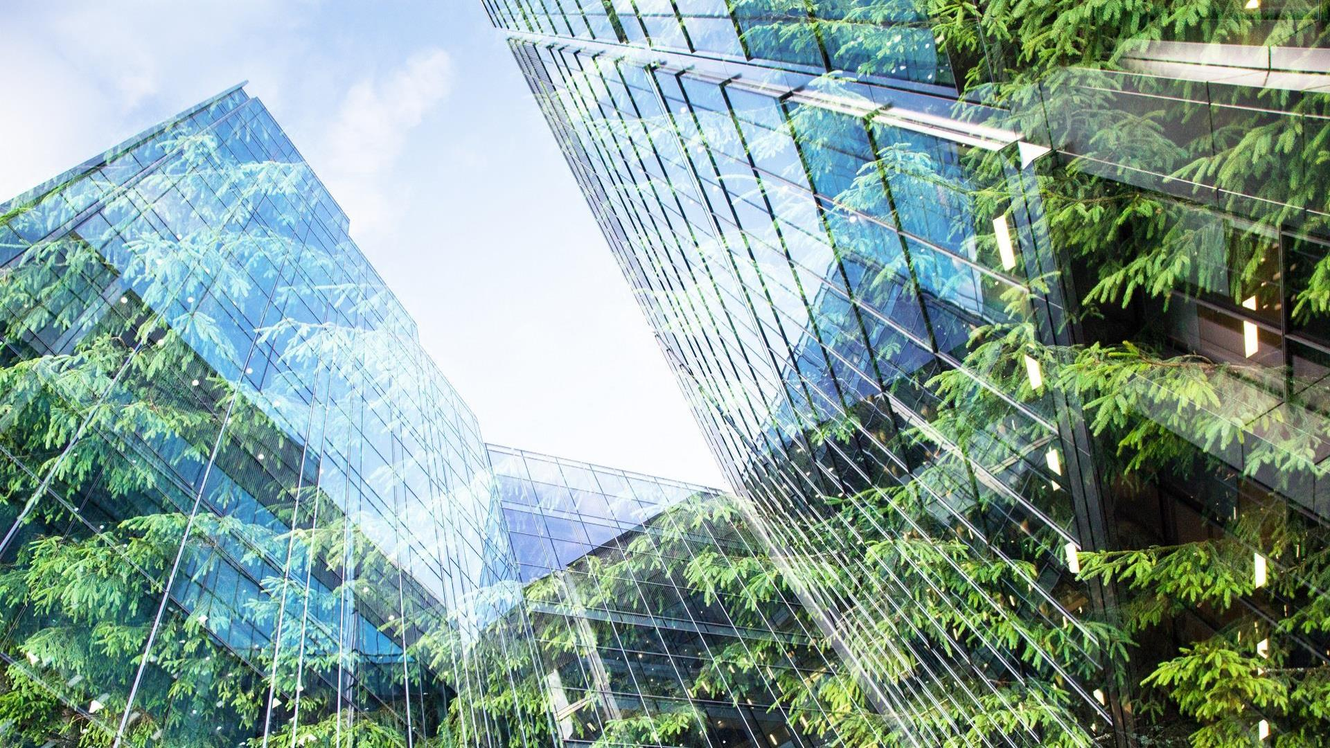 ESG for asset managers: 10 things you need to know