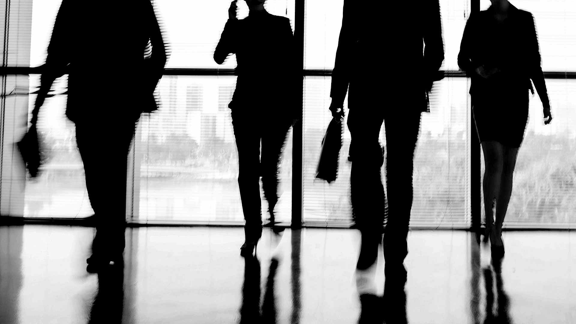 Silhouette of office workers