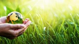 hands holding green environment globe