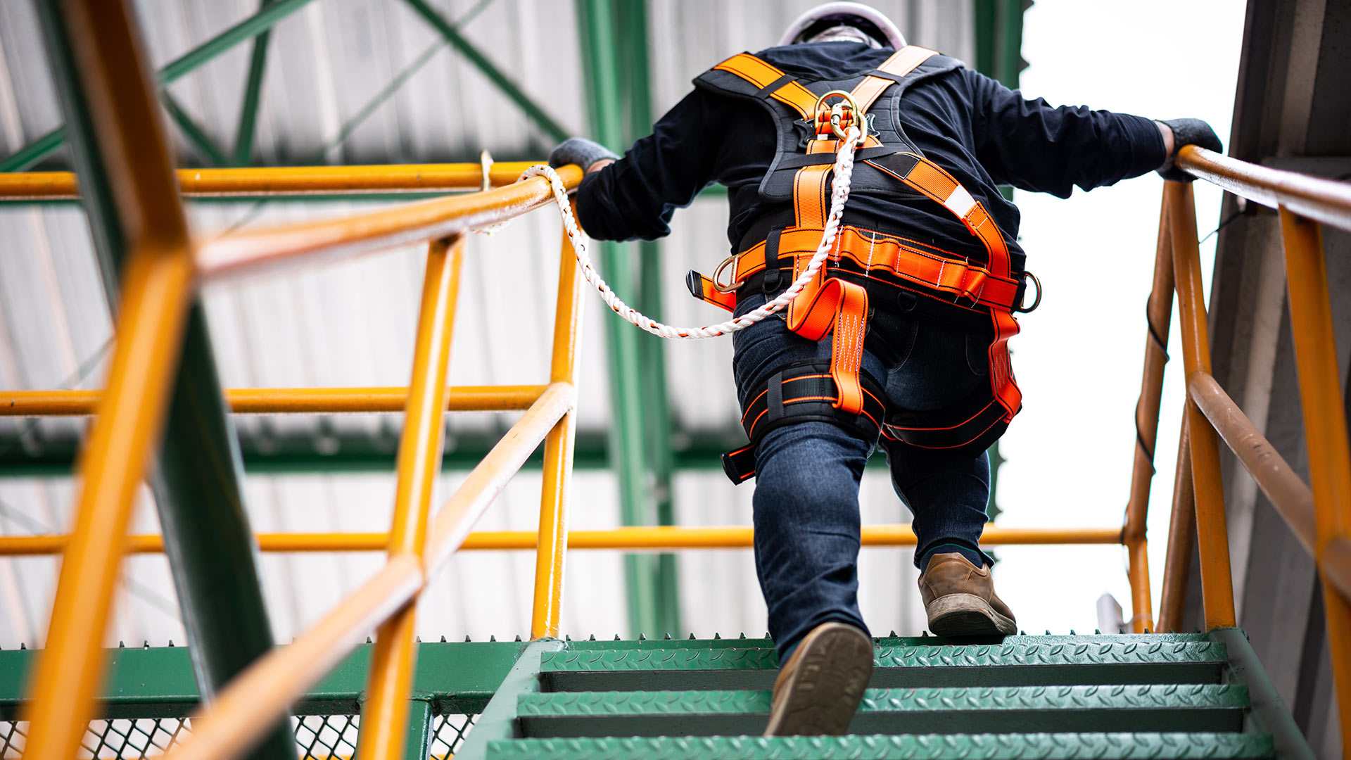 Work health and safety law: 2019 year in review