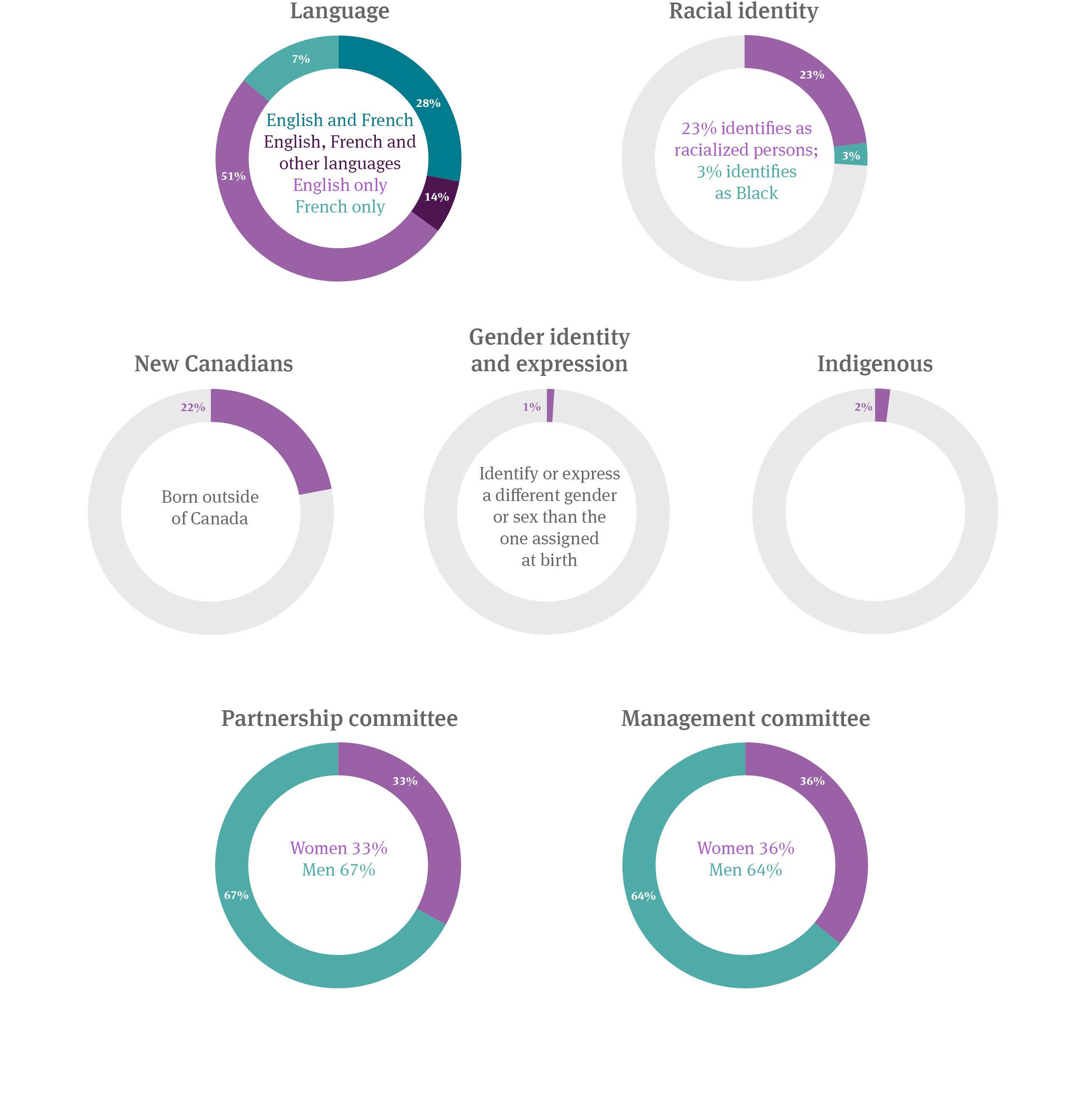 Diversity demographic infographic 2020-21