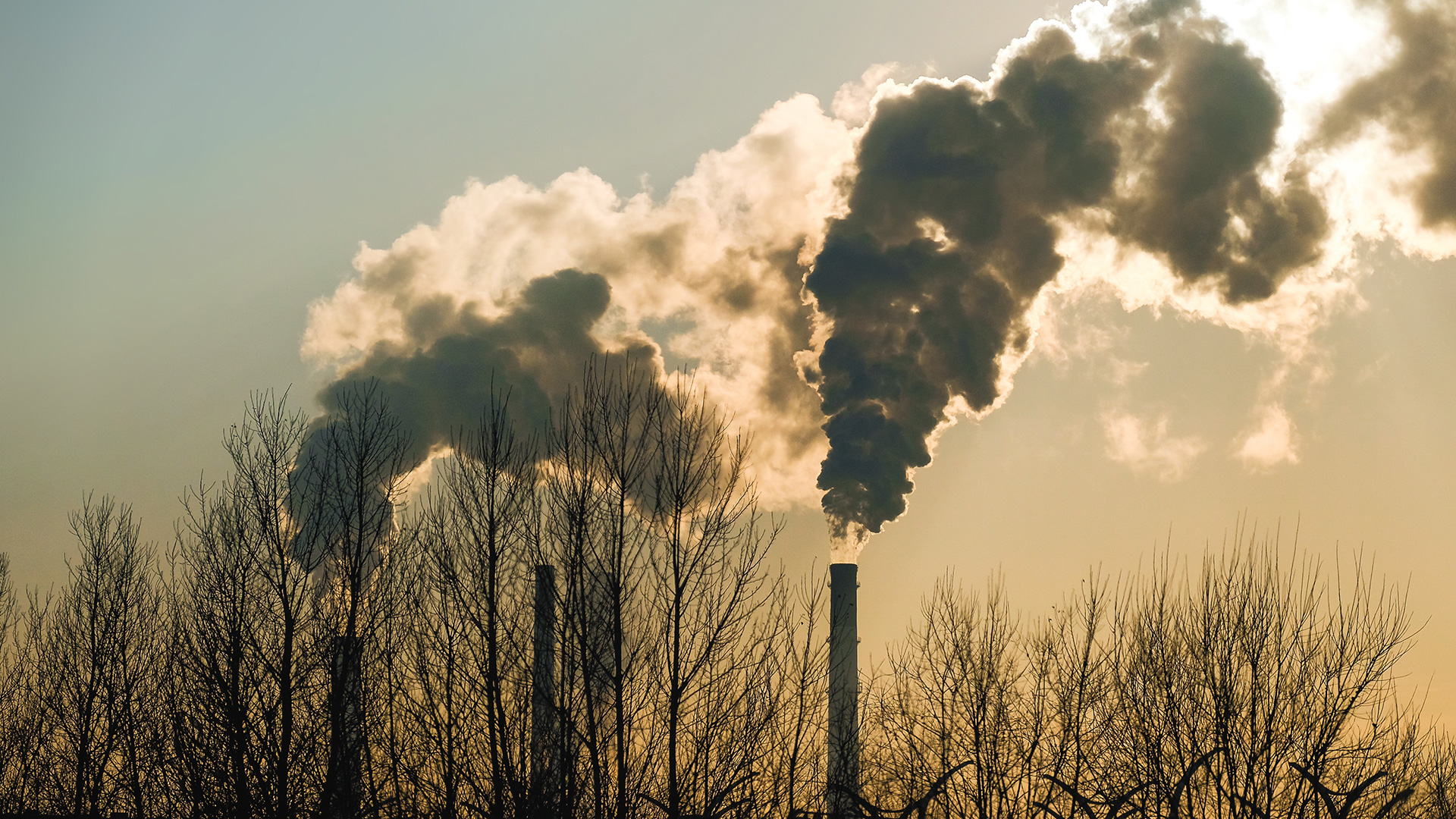 Can you claim a carbon credit for shutting down due to the pandemic?