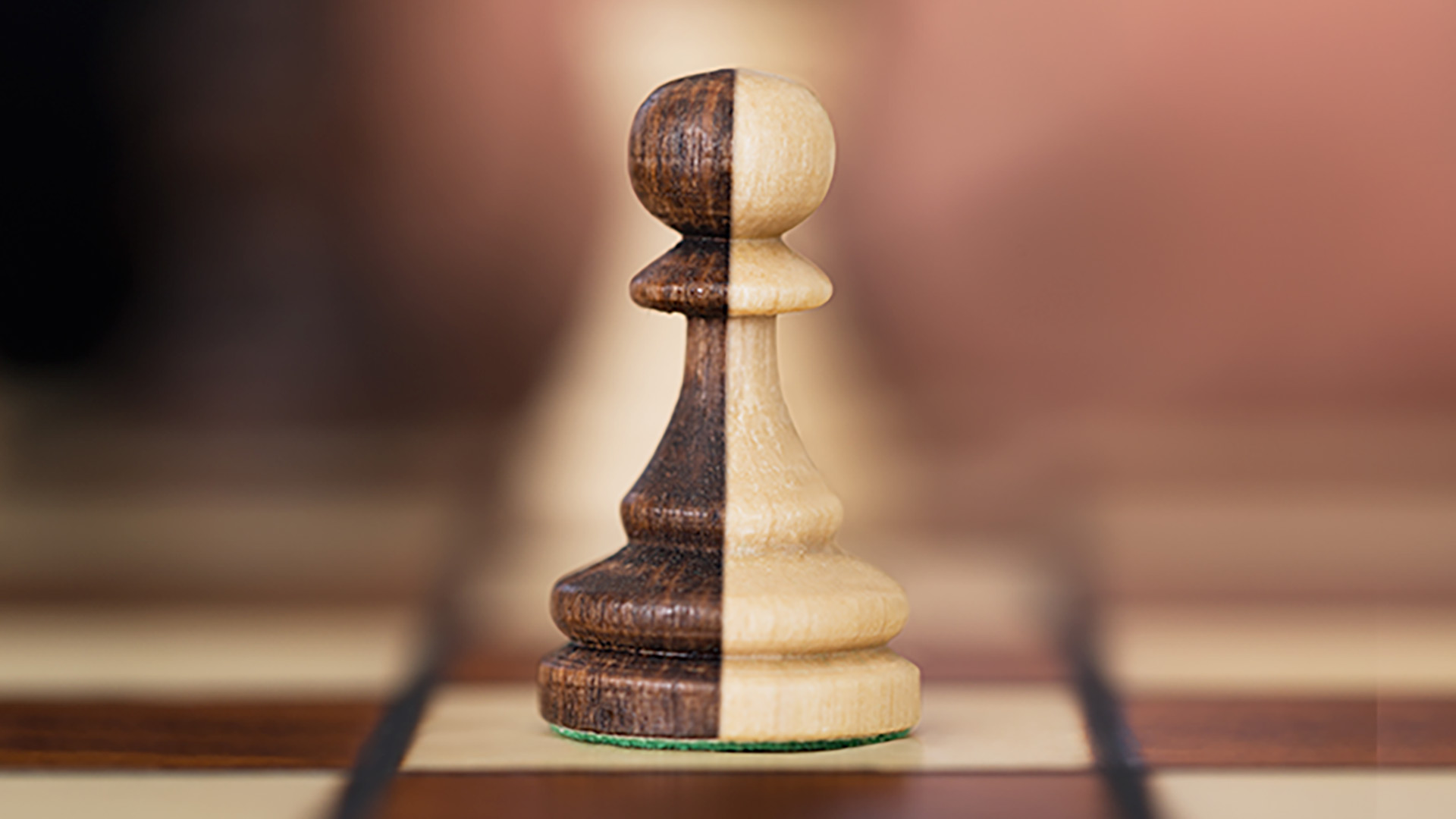 Chess pawn split into two colours: black and white