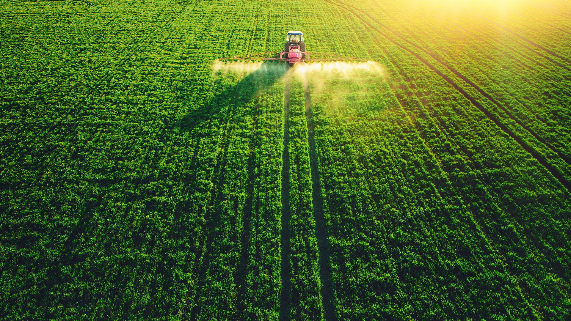 Aerial view of farming tractor spraying a field