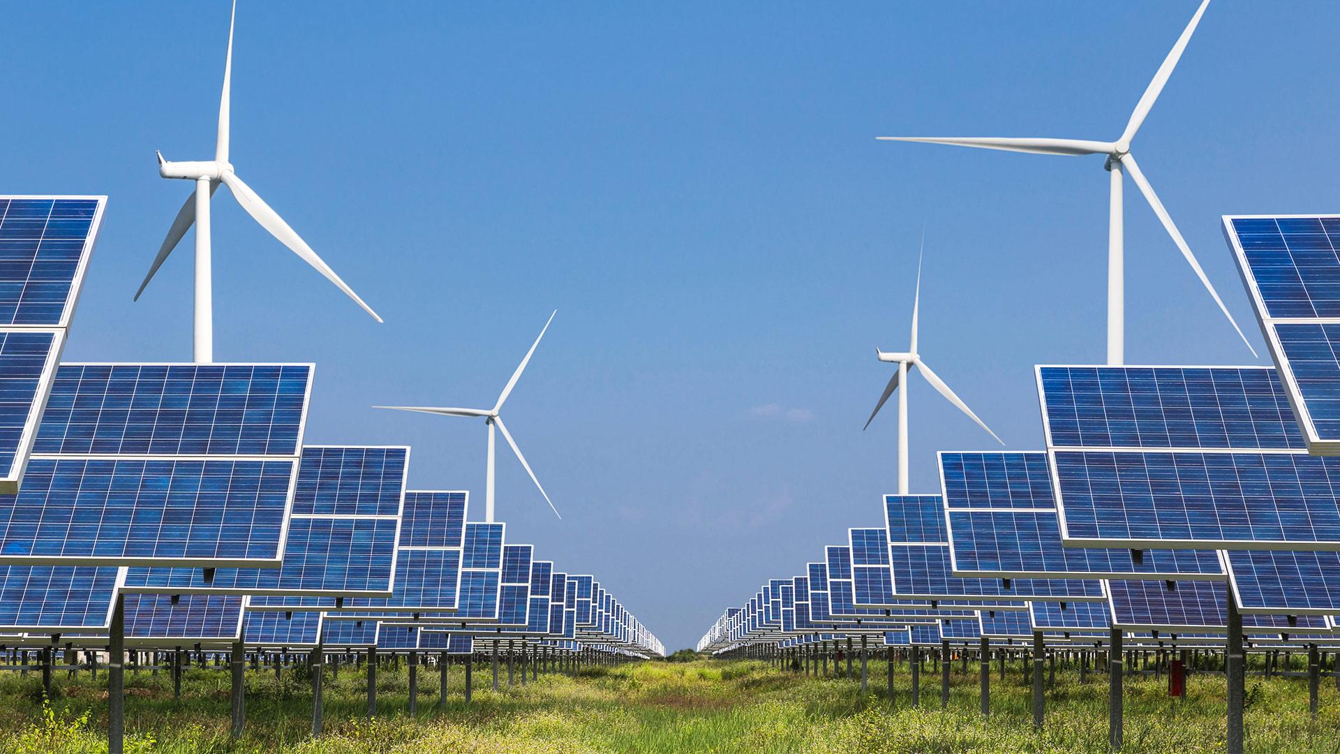Solar panel and wind farm