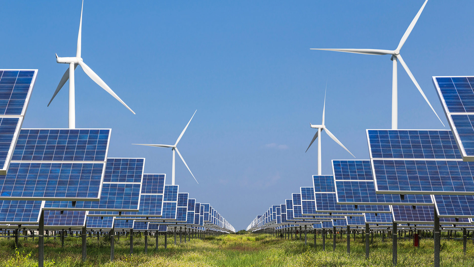Solar panel and wind farm