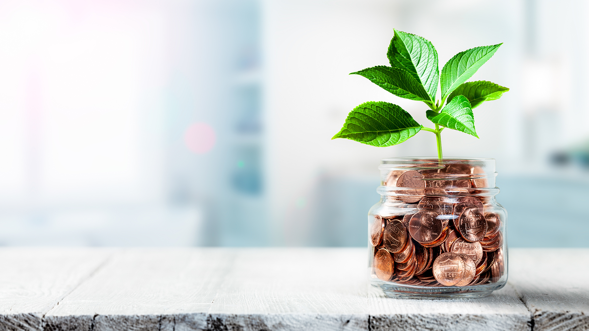 coins in jar with plant