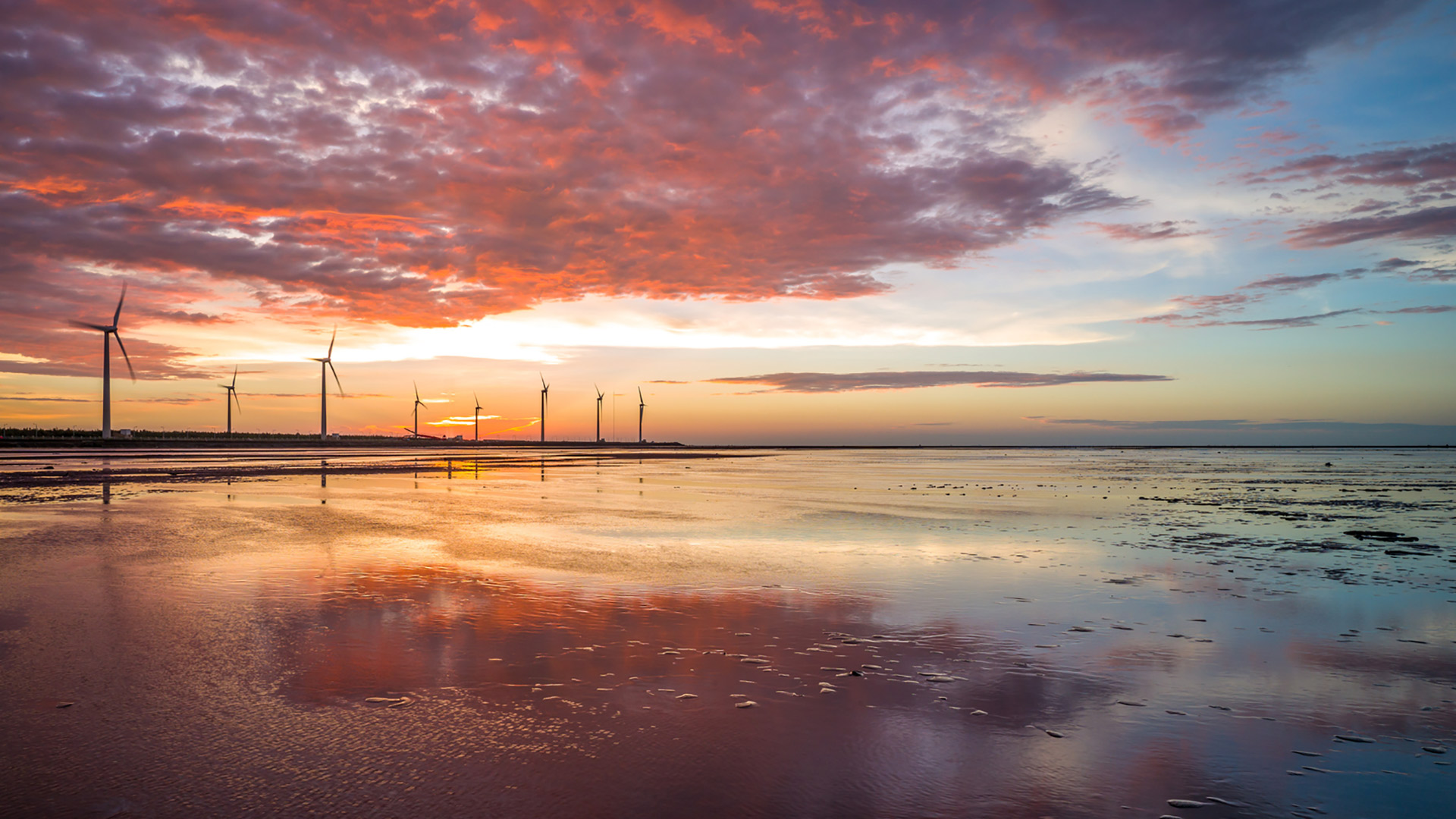 Wind turbines on beach